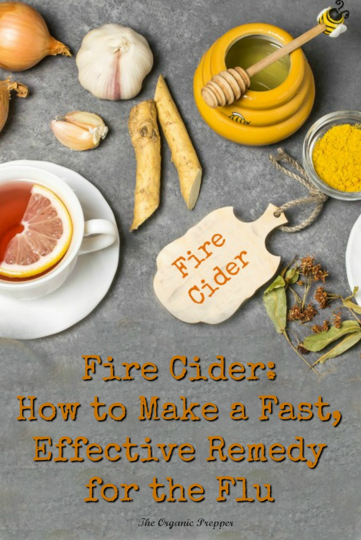 Got the flu? Fire cider is loaded with anti-inflammatory, immune-supporting, and decongestant herbs.It\'s super simple to make and the ingredients are easy to find.