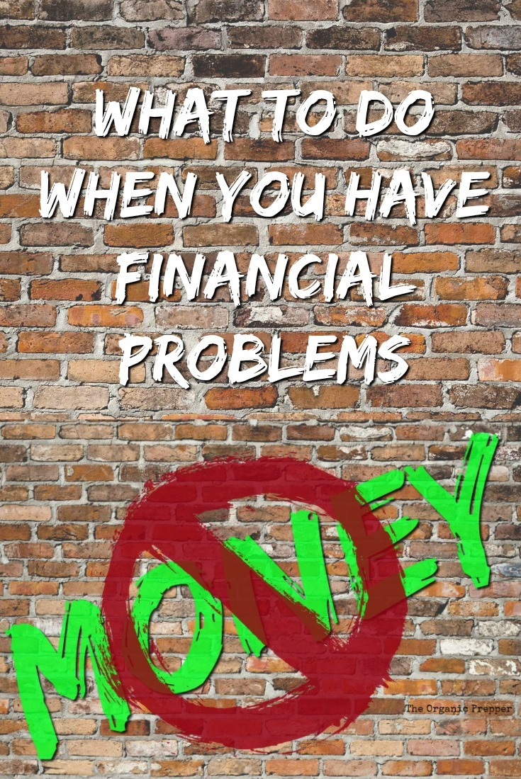 Anyone can run into hard times financially, no matter how carefully you try to prepare. Here's what you can do to bail yourself out. | The Organic Prepper