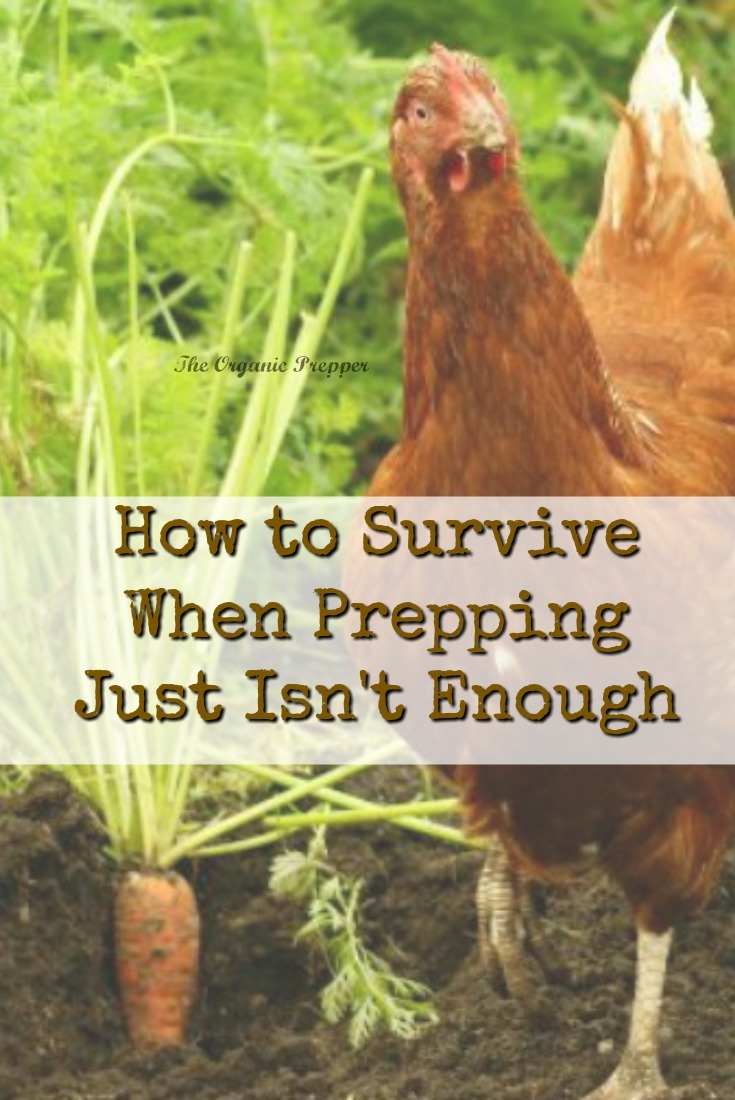 There are some situations you simply can't prep for. And for those situations, you must be self-reliant and realistic. | The Organic Prepper