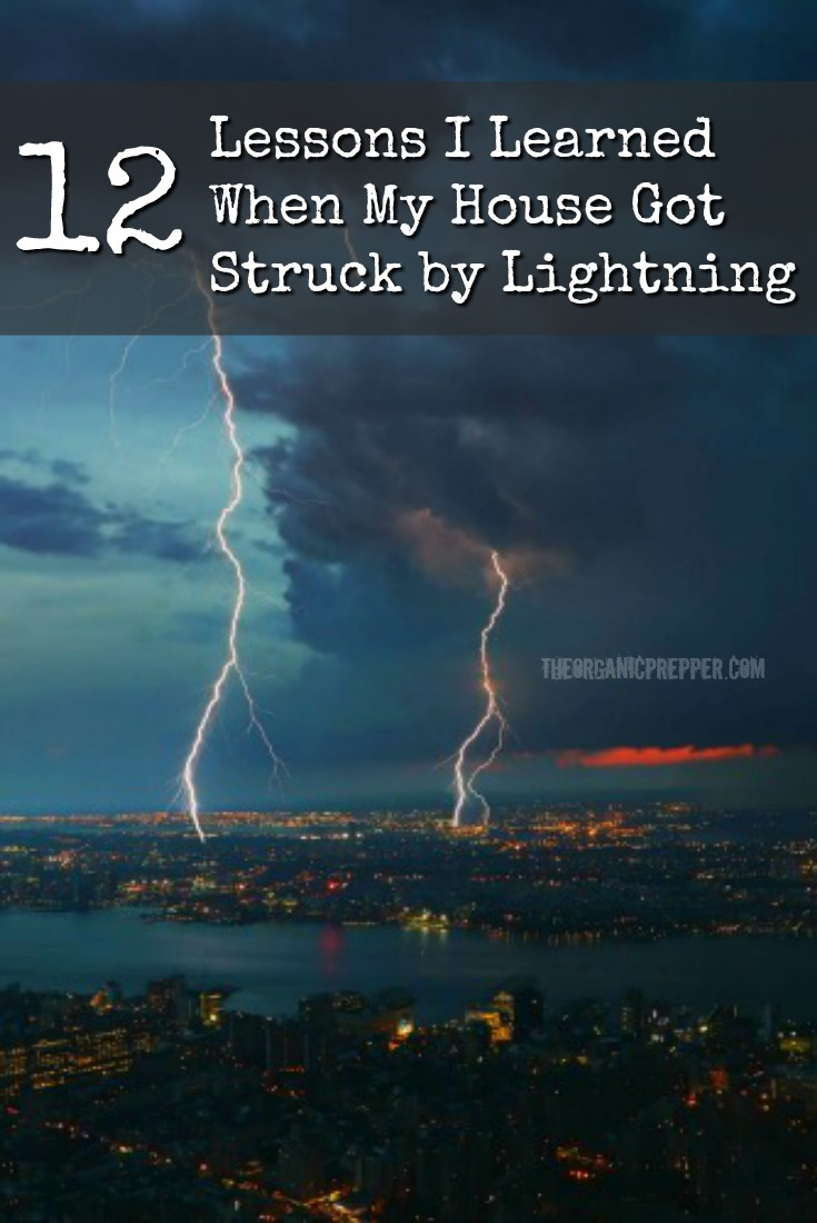 When your house gets struck by lightning, the lessons learned can be used to better prepare your home for an EMP event.