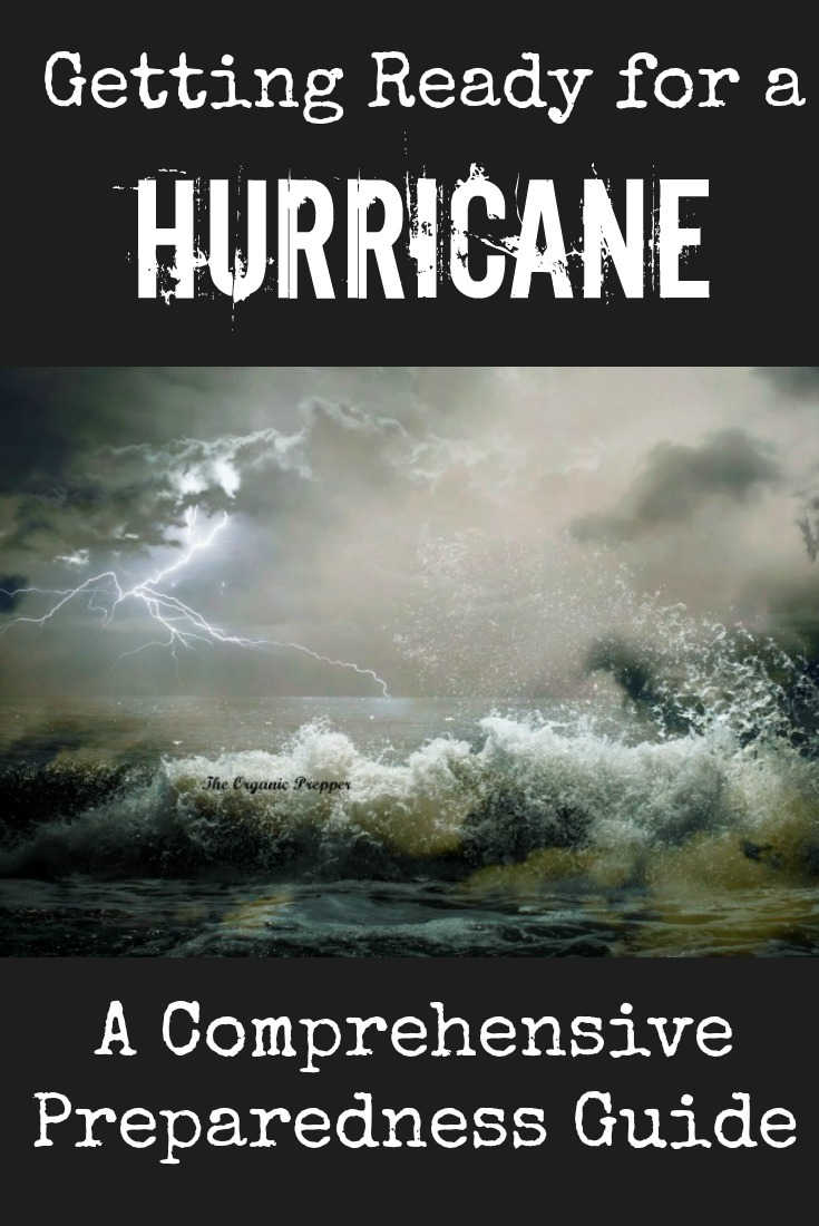 Here\'s a very thorough hurricane preparedness guide with a free shopping list!
