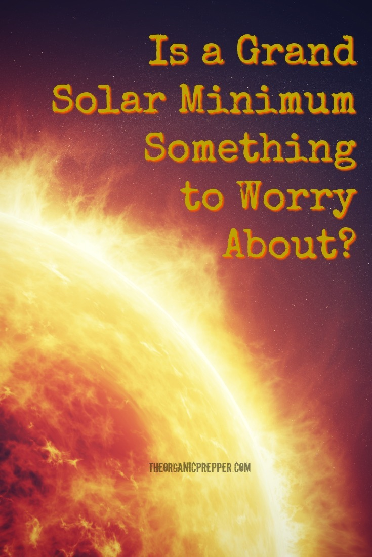 What is a grand solar minimum and is it something we should worry about? Here are the details to know about the sun\'s lack of activity. | The Organic Prepper
