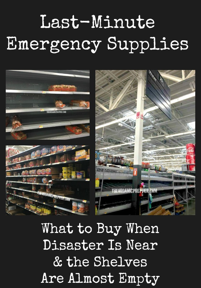 If you need to get some last-minute emergency supplies but your original choices are gone, here's what to buy when the shelves are almost empty.