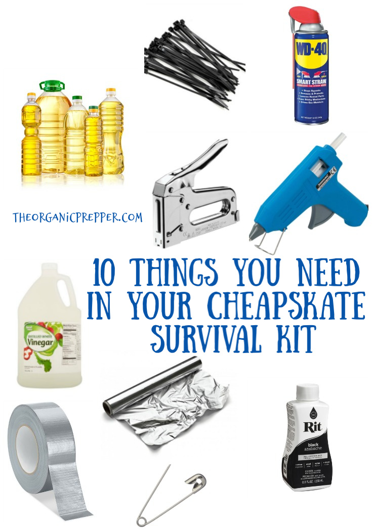 If you enjoy fixing, mending and MacGuyvering like any self-respecting Cheapskate, you need a special survival kit just for your frugal activities