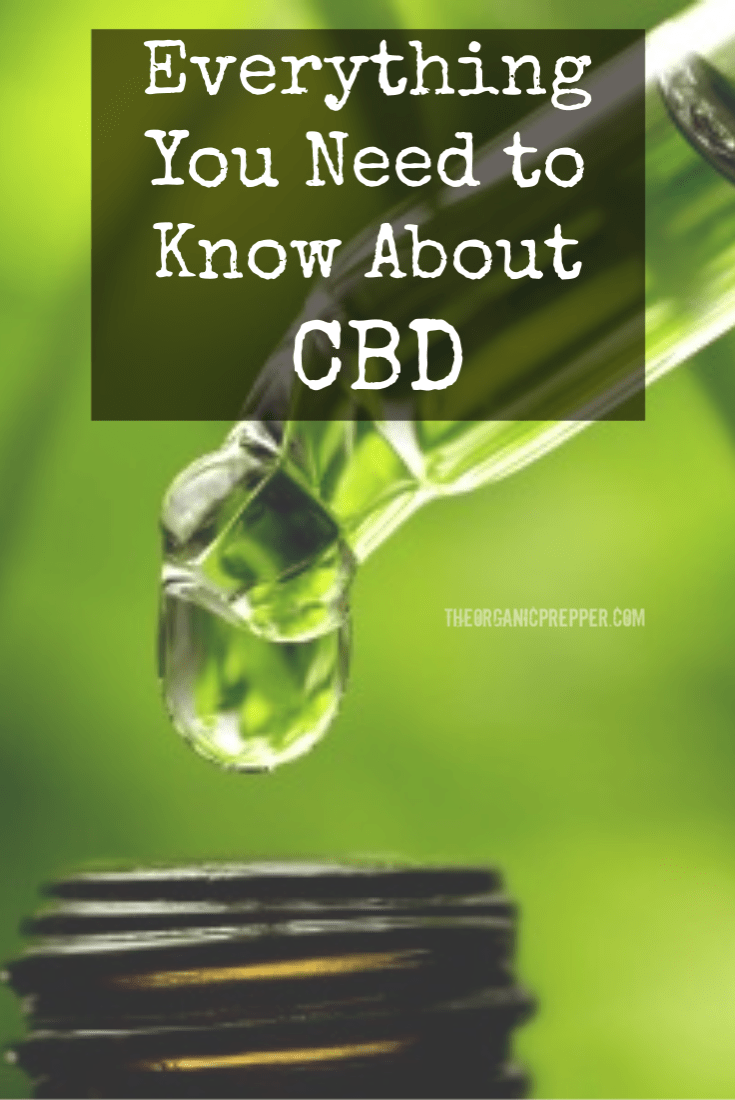 As more people seek effective natural remedies for health problems, interest in CBD products is growing.; Here\'s what to know about cannabidiol. | The Organic Prepper