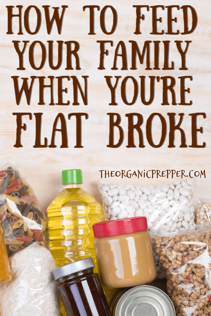 Feeding your family when you\'re flat broke isn\'t easy but it can be done.  Here\'s how to prepare for a lean month when you\'re on a super-tight budget. | The Organic Prepper