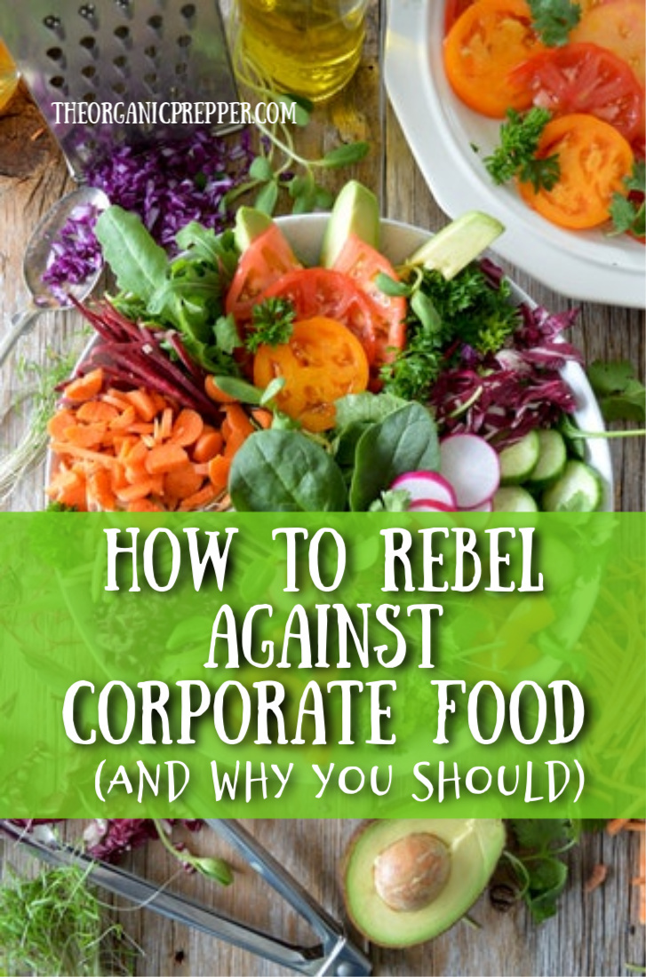 Did you know that 4% of farms grow almost 2/3 of the food consumed in America? Here\'s how to rebel against corporate food and get healthier while you do it. | The Organic Prepper