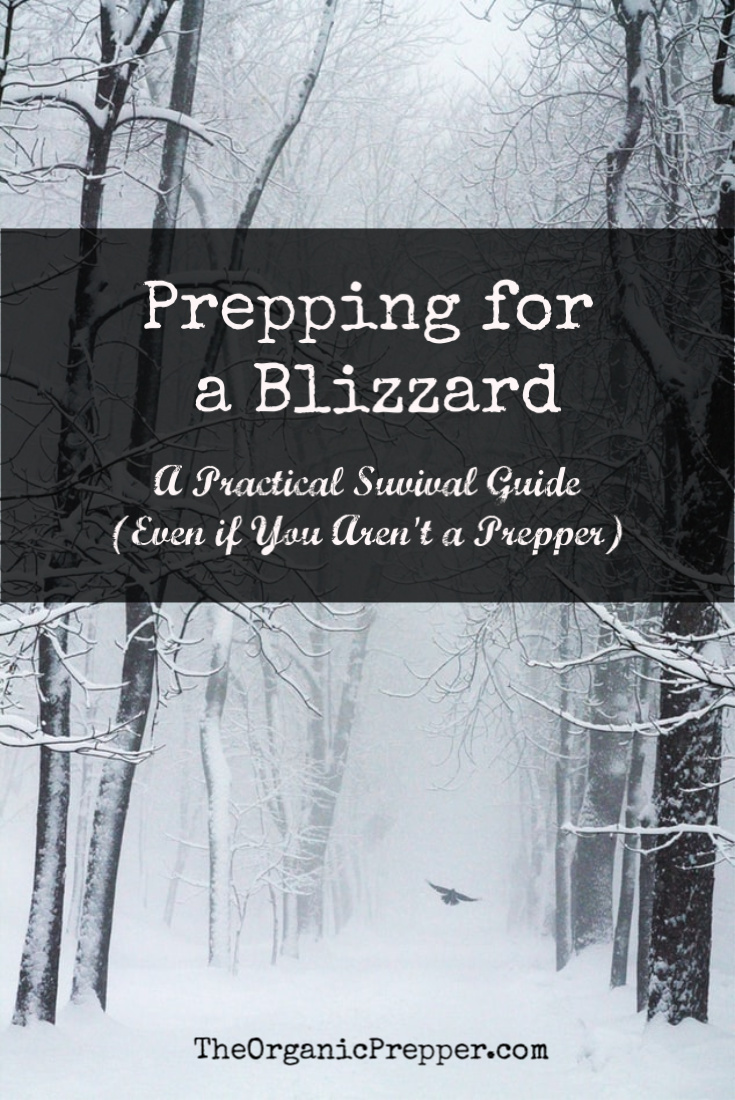 You don\'t have to bea bunker-dwelling, camo-clad prepper to see the logic behind prepping for a blizzard if you live in a climate where they occur.
