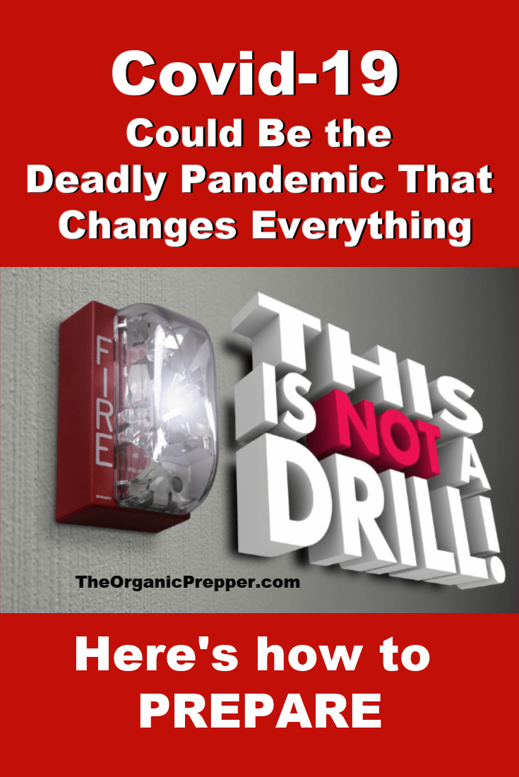 Covid-19 has all the warning signs of becoming the next deadly global pandemic that will affect us all in some way. This is not a drill. You need to get prepared for the possibility of city-wide lockdowns and quarantines.