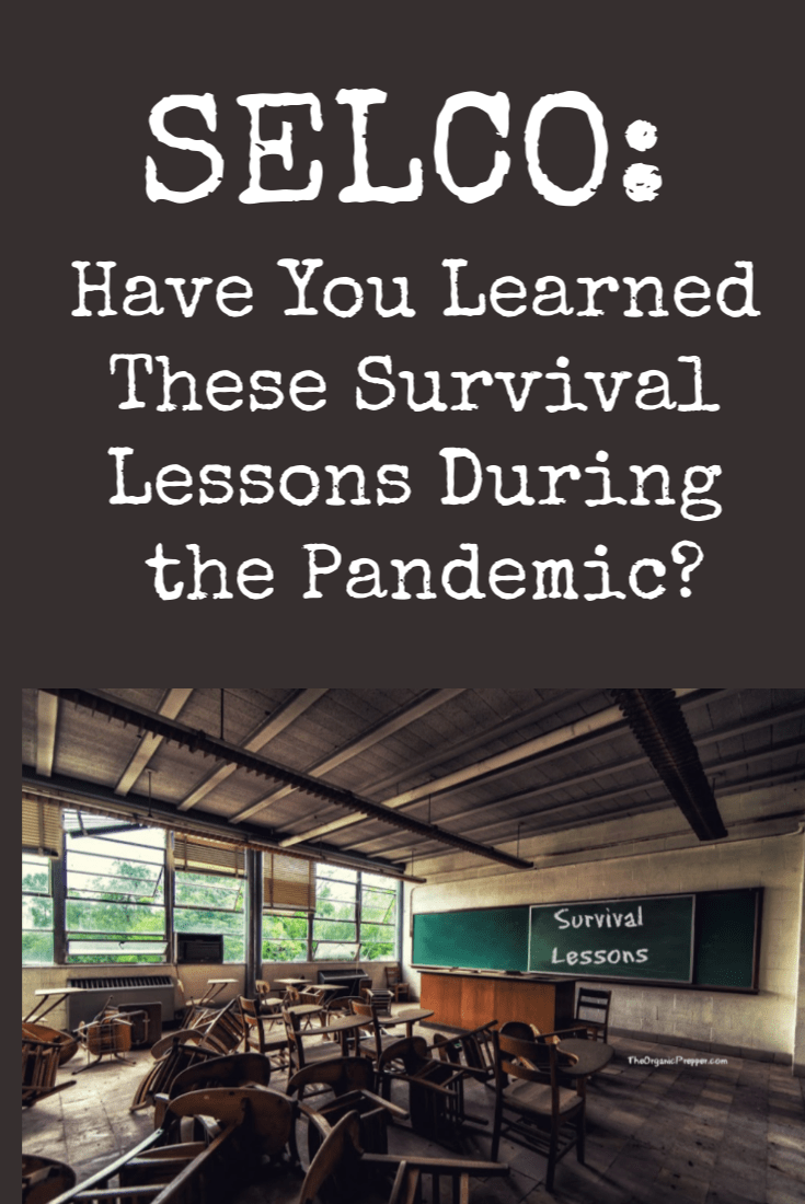 There is nothing better than learning from your own experiences. Selco asks if you learned the most important lessons of survival during the pandemic. | The Organic Prepper