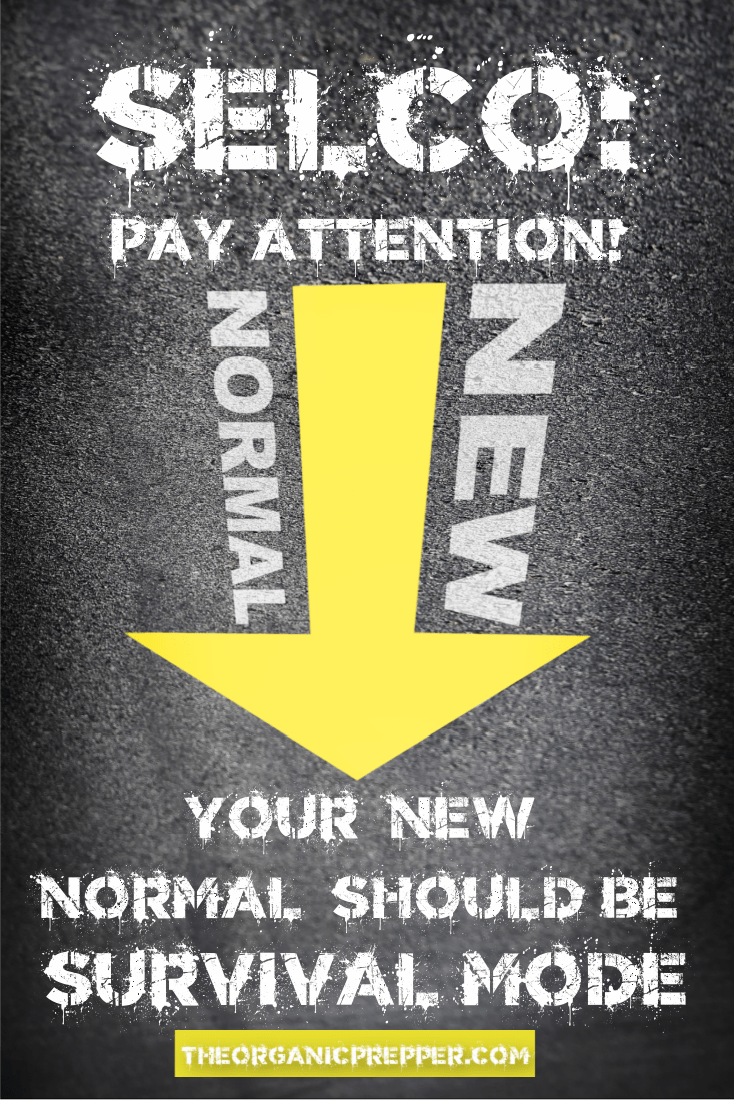 """SELCO: Pay Attention Because Your """"New Normal"""" Should Be Survival Mode"""