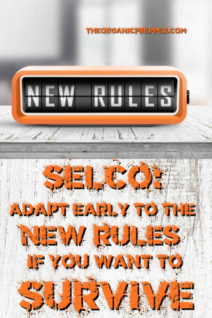"SELCO: Adapt Early to the ""New Rules"" If You Want to Survive"