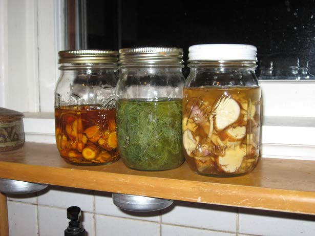 herbal vinegars