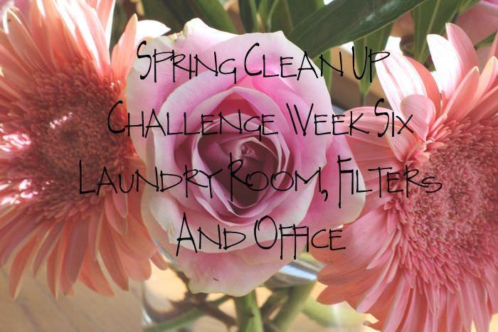 Spring Clean Up Challenge Week 6