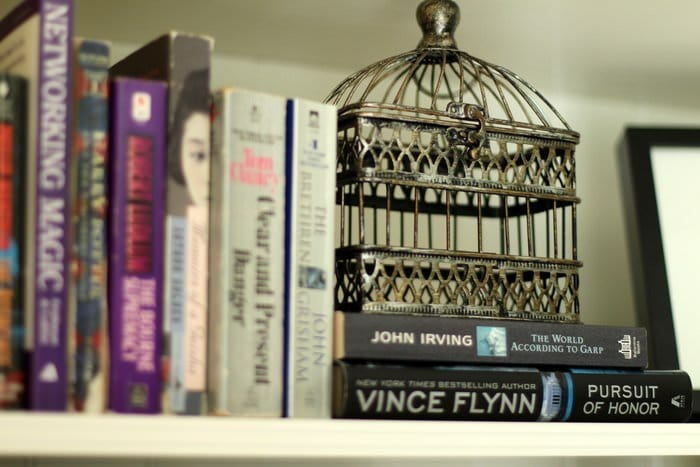 Decorating Living Room Shelves - Books And Birdcage