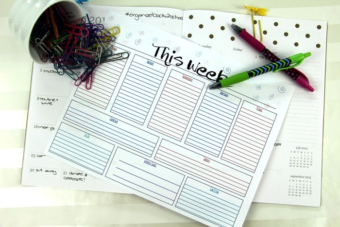 Setting Up Schedules And Routines - Weekly Calendar