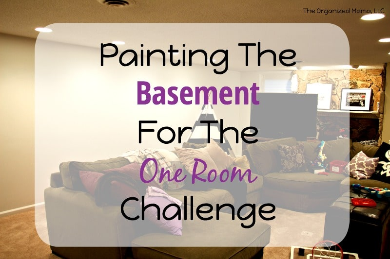 Painting The Basement ORC