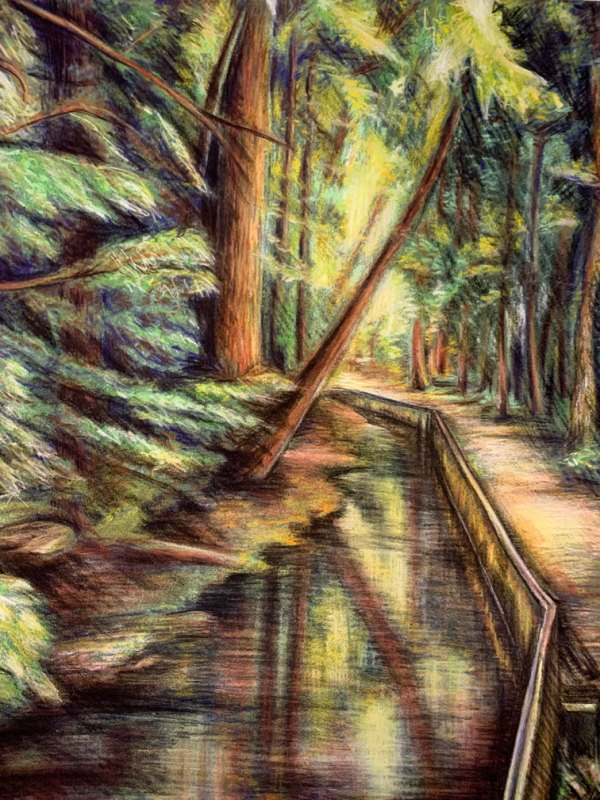 There's nothing greener than the humid light of the south. Based off a collection of snapshots from Hilton Head Island, South Carolina, this pastel chalk landscape drops shadows between the trees and across the water of a stagnant creek.