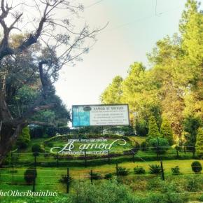 A Walk In the Woods – Aamod at Shoghi