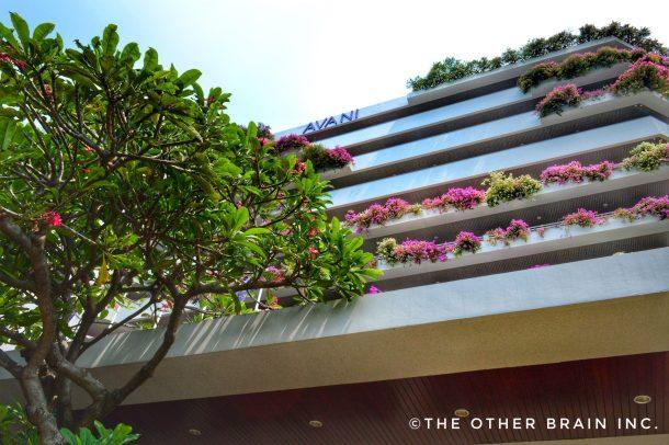 Enchanting AVANI Pattaya Resort