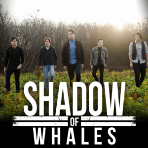 shadow of whales2