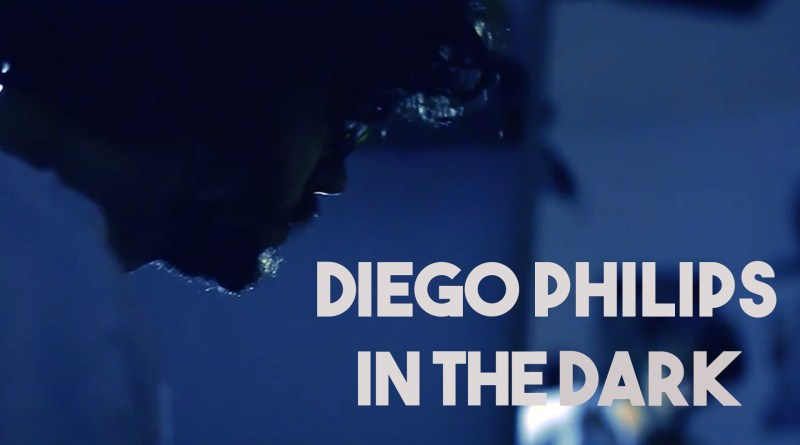 Diego Philips In The Dark cover