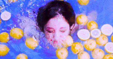 elvet Starlings Karmic Lemonade cover