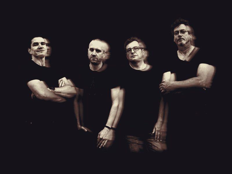 Pulse Park Band