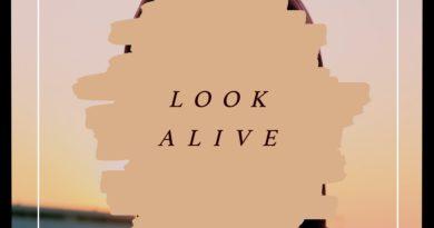 After Elmer Look Alive cover