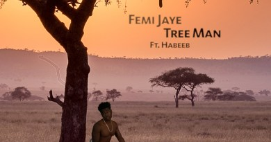 Femi Jaye Tree Man cover