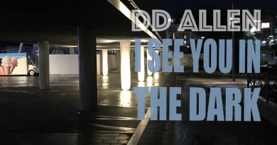 DD Allen I See You in the Dark cover