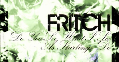 Fritch Do You See What I See ep cover