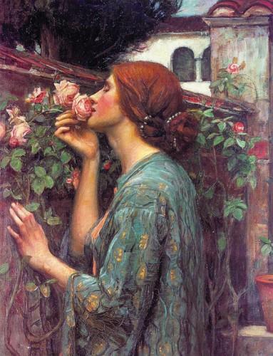 My Sweet Rose John William Waterhouse 1903 - possible Myrredith