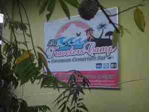 travelers camp a low budget accommodation in caramoan