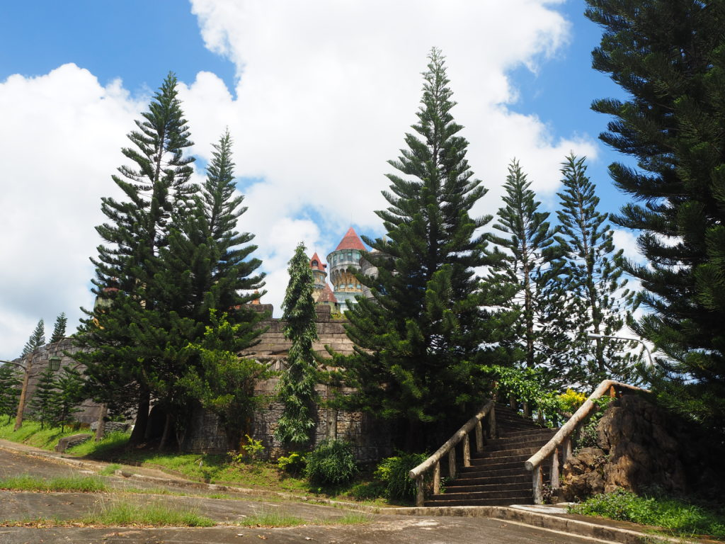 pine trees in the castle fantasy world in lemery batangas