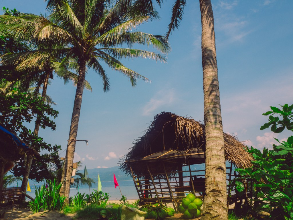 nipa hut and coconut trees in white beach resort in dingalan aurora