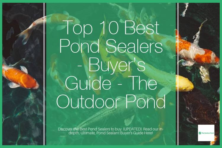 Top 10 Best Pond Sealers & Sealants