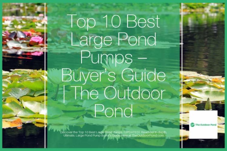Top 10 Large Pond Pumps