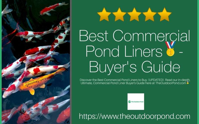 Best Commercial Pond Liners
