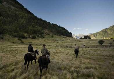 Horse Riding & Polo