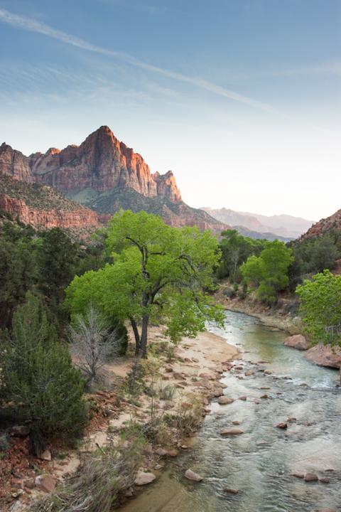 Utah Family Trip - Zion National Park