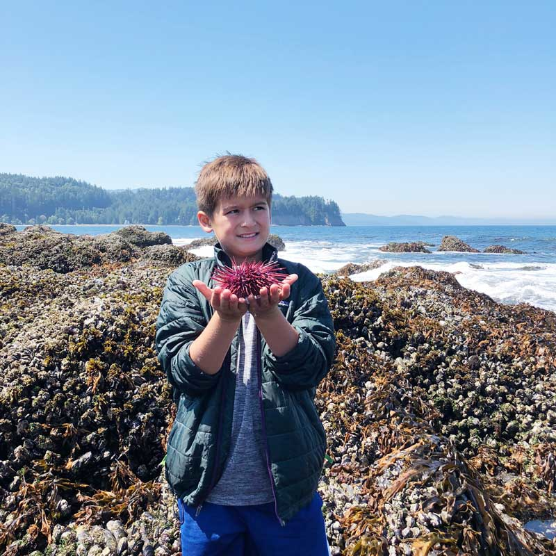Olympic National Park Highlights - The Outside and In