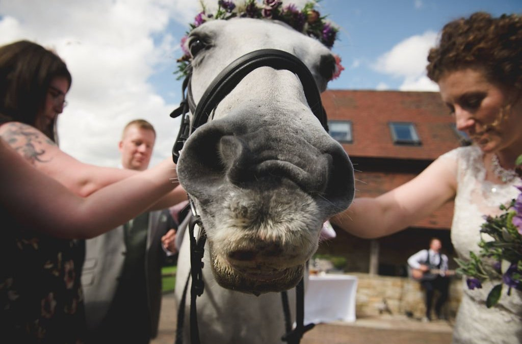 Shula and Dan's horseback wedding in the Cotswolds