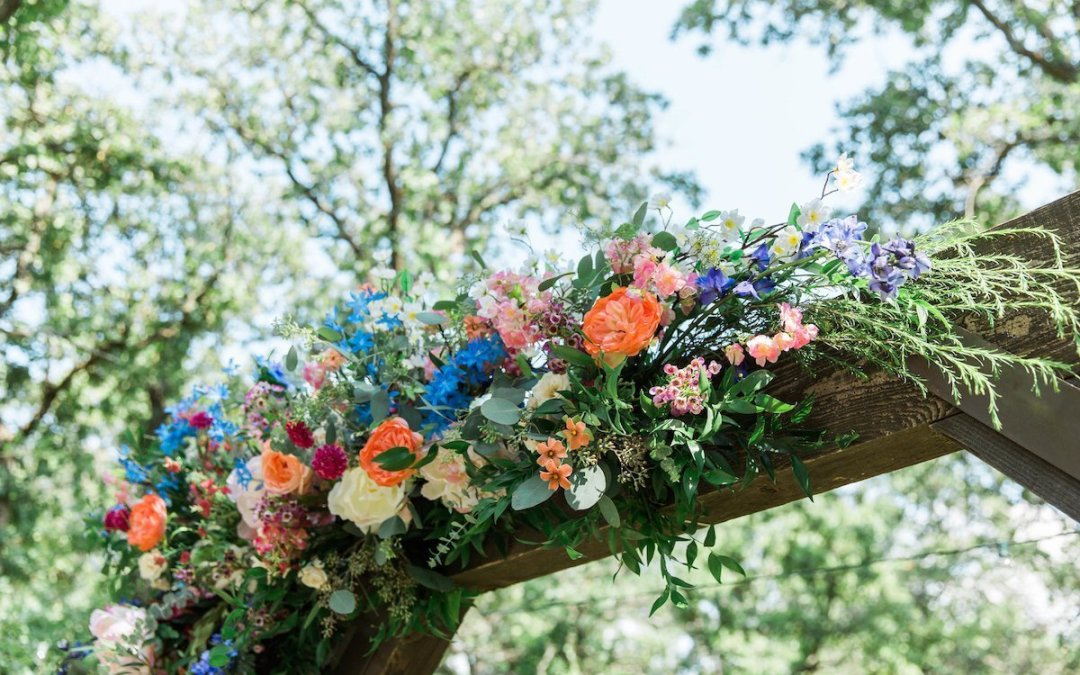 Taylor and Mikaela's Vibrant Outdoor Wedding
