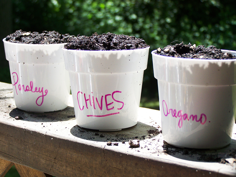 3 inch plastic plant pots for seedlings, cuttings.