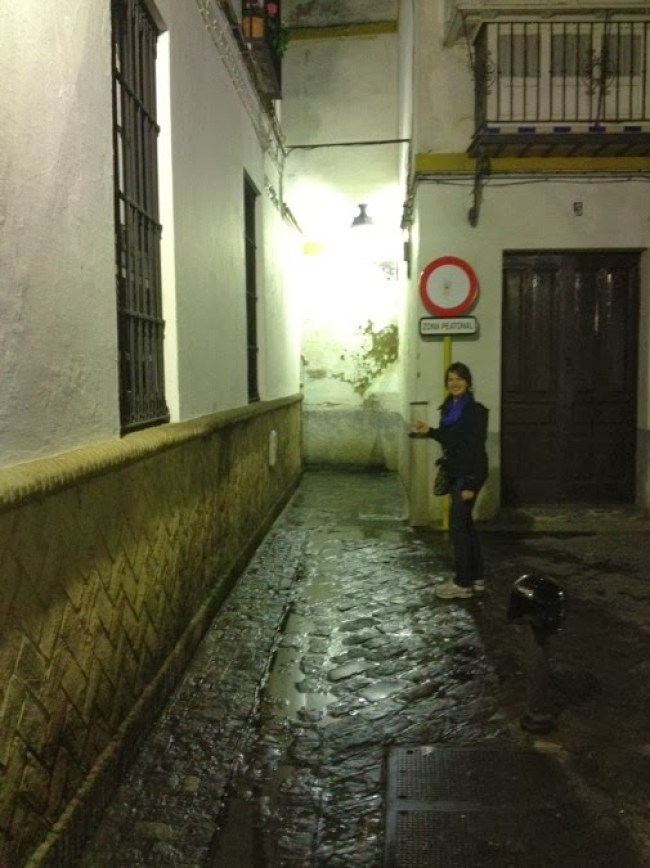 Seville14
