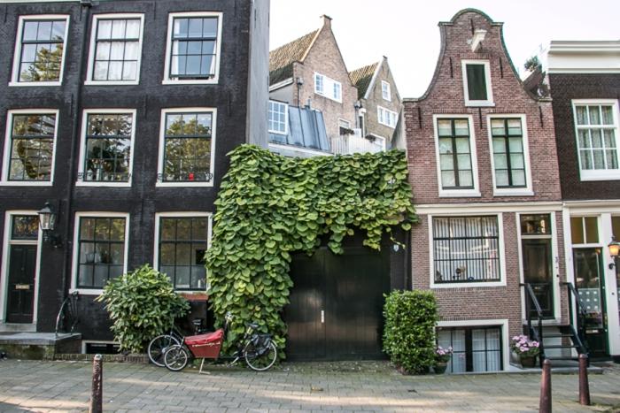 Amsterdam, Netherlands | Guten Blog Y'all