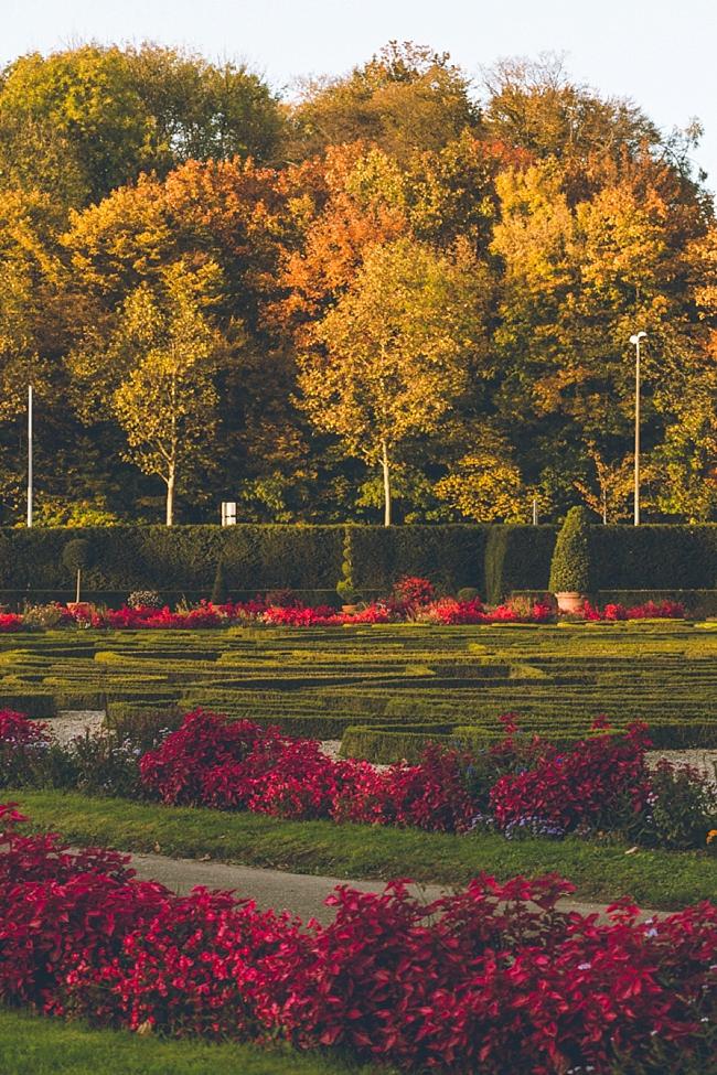 Autumn_Germany-6_Germany.jpg