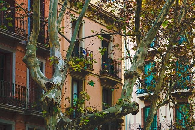 Spain_0017