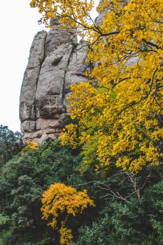 Montserrat_Spain-37